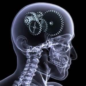 Развитие памяти и мышления