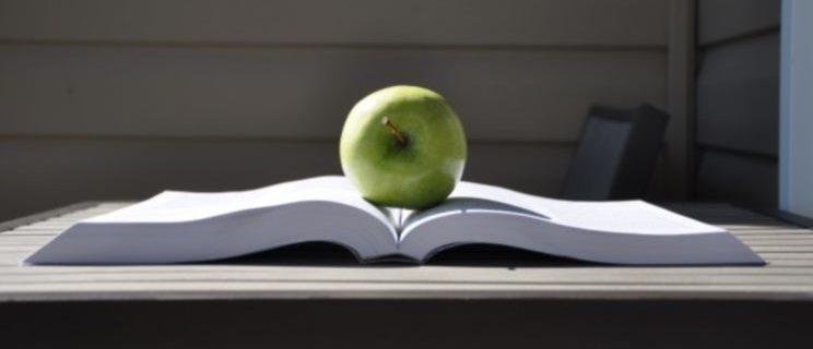 Полезные привычки: ТОП-10 полезных привычек