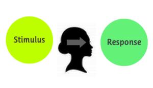 Формула поведения, предложенная Дж. Уотсоном